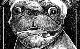 serie d'illustration en noir et blanc