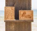 Cartes postales sur bambou